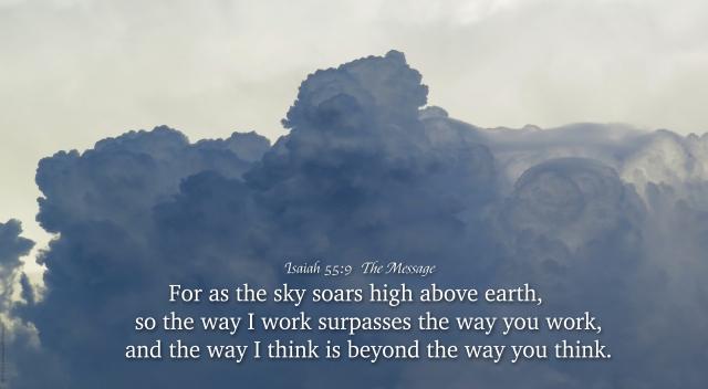 sky soars
