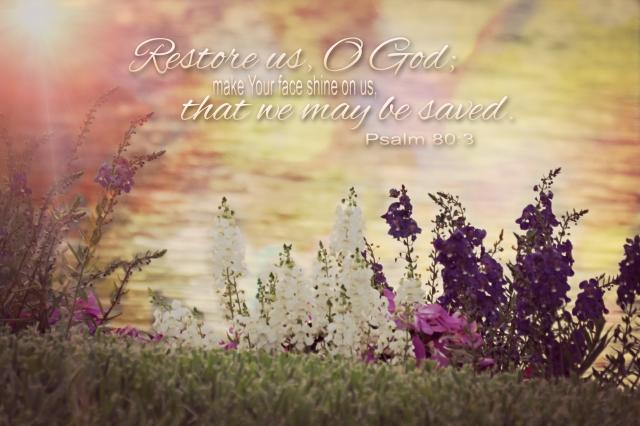 restore us