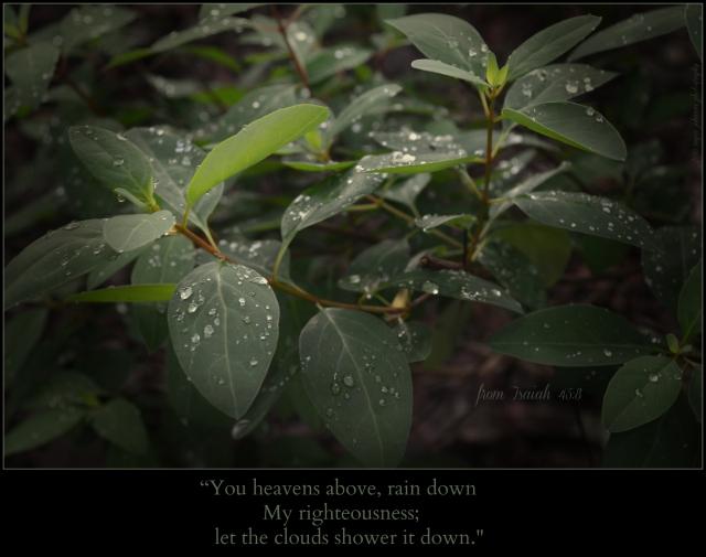 rain down