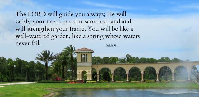 watered garden