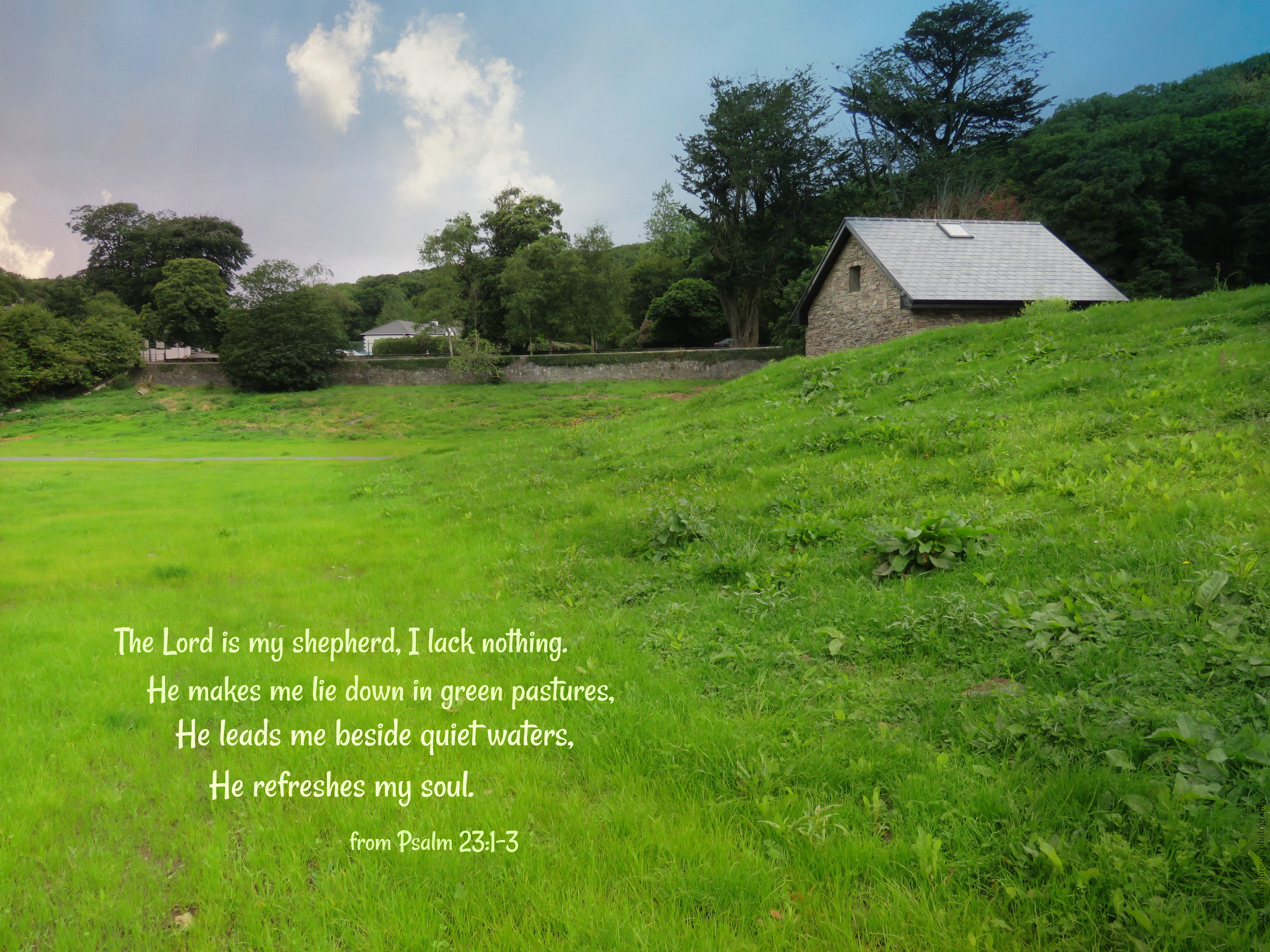 Are You Always Searching for Greener Pastures, Based on ...
